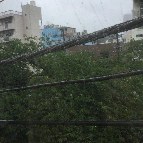 梅雨入りのようで☔️🌊